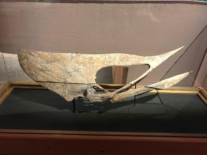 北アメリカ古生物博物館 #8 剛腸石心 – ケラトプスユウタの恐竜旅行ブログ